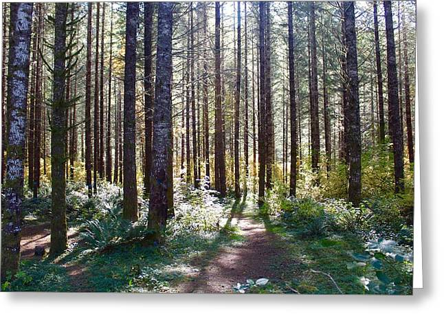 Forest Stroll Greeting Card