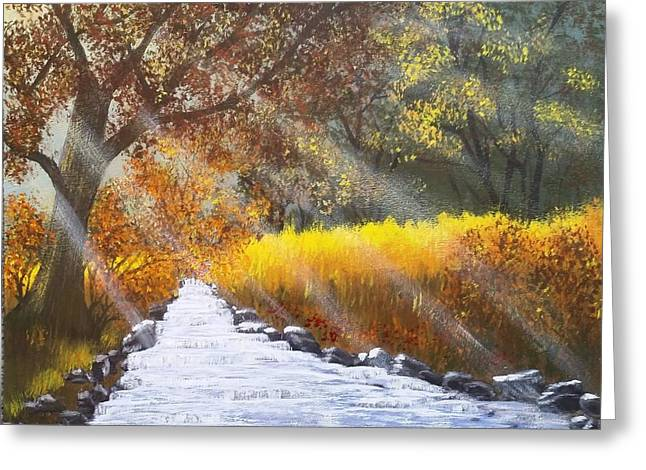 Forest Sunrays Over Water Greeting Card