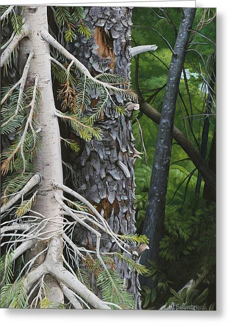 Forest Textures Greeting Card by Wendy Ballentyne