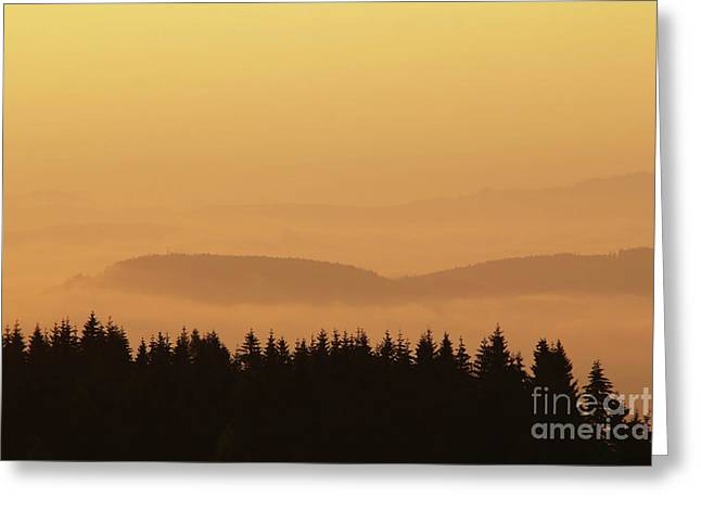 Forested Hills In Early Morning Mist Greeting Card by Michal Boubin
