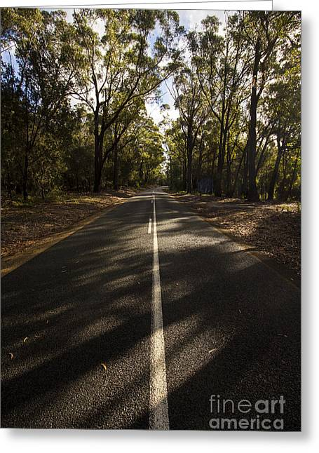 Greeting Card featuring the photograph Forestry Road Landscape by Jorgo Photography - Wall Art Gallery