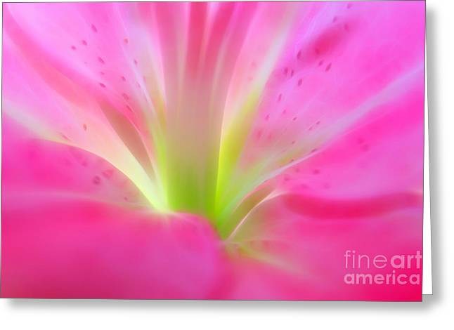 Forever In Pink Greeting Card by Krissy Katsimbras