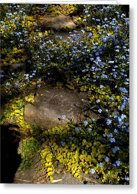 Greeting Card featuring the painting Forget-me-nots 1 by Renate Nadi Wesley