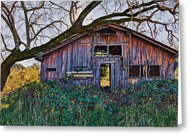Forgotten Barn Greeting Card by Garry Gay