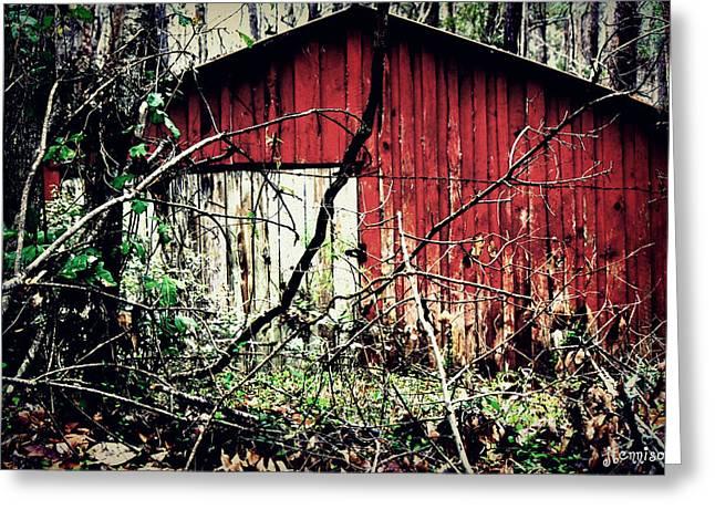 Forgotten Barn Greeting Card by Jill Tennison