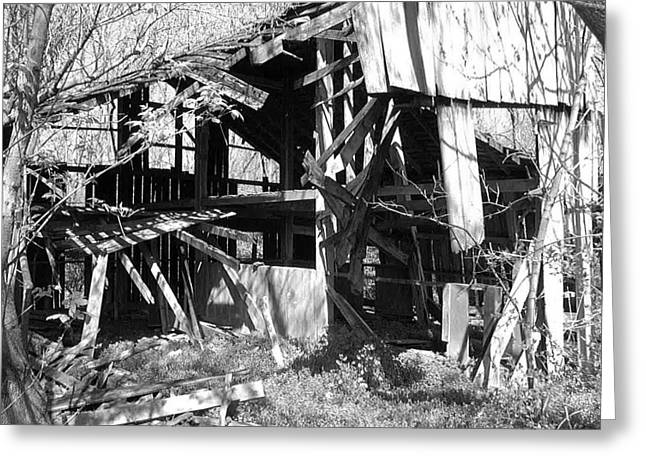 Forgotten Barn Greeting Card by Terry  Wiley
