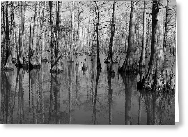 Forgotten - Black And White Art Print Greeting Card