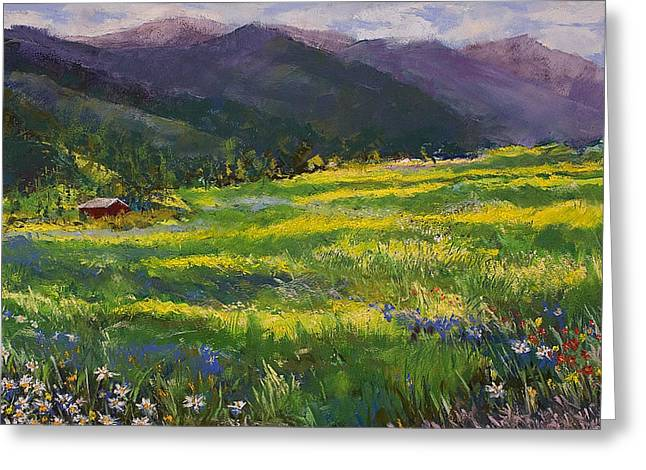 Meadow Pastels Greeting Cards - Forgotten Field Greeting Card by David Patterson