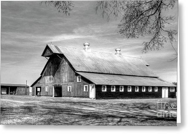 White Windows 2 Rural Hopkinsville Kentucky Barn Art  Greeting Card by Reid Callaway