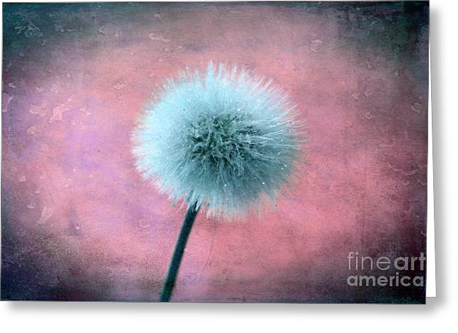 Forgotten Wishes Greeting Card by Krissy Katsimbras