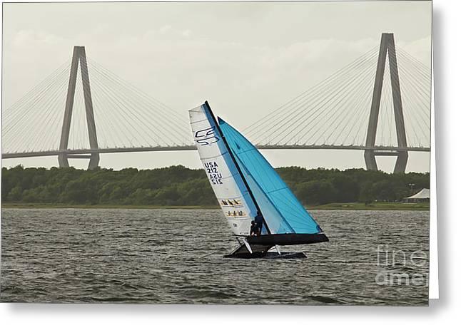 Formula 18 Sailing Cat Big Booty Charleston Sc Greeting Card by Dustin K Ryan