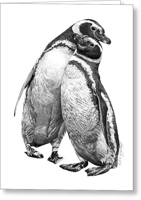 Forrest And Jenny The Penguins Greeting Card
