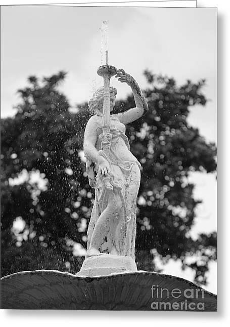 Forsyth Park Fountain - Black And White 2 2x3 Greeting Card by Carol Groenen