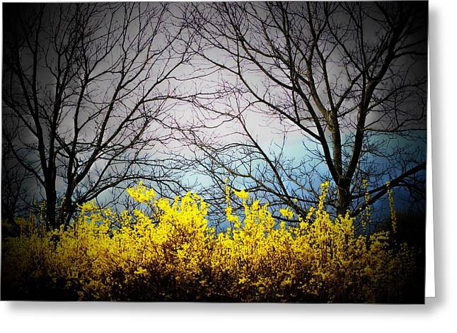 Forsythia By The Mountains Greeting Card by Joyce Kimble Smith