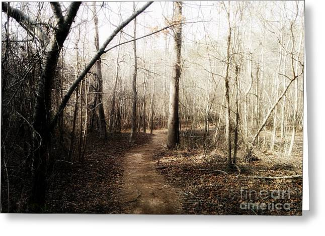 Greeting Card featuring the photograph Fort Yargo Trail by Utopia Concepts