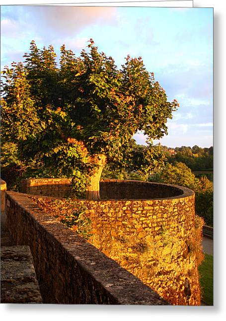 Fortress Tree At Sunset In Le Dorat Greeting Card