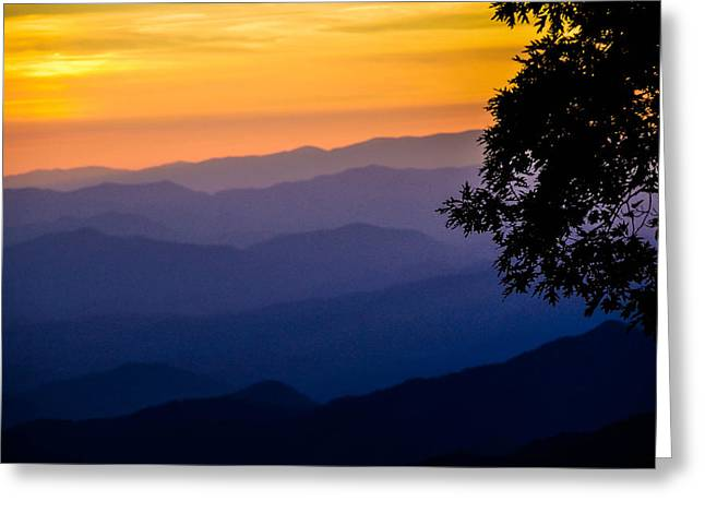 Fortuitous Sunset Greeting Card