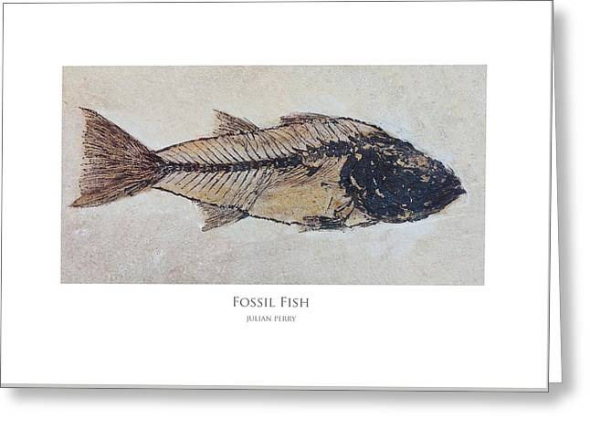 Fossil Fish Greeting Card