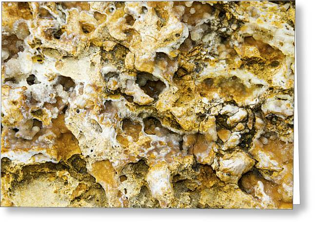 Fossil Rock Abstract 8 Greeting Card by Bob Slitzan