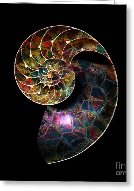 Greeting Card featuring the digital art Fossilized Nautilus Shell by Klara Acel