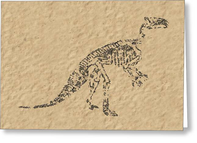 Fossils Of A Dinosaur Greeting Card