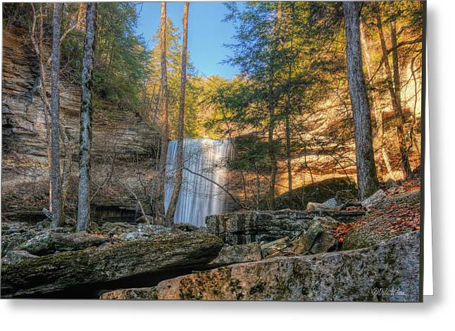 Lower Greeter Falls 1 Greeting Card by Dale Wilson