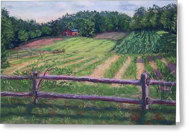 Fosterfields Farm Greeting Card by Laurie Paci