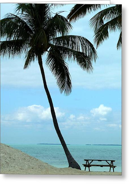 Founders Tree Greeting Cards - Founders Park Beach Greeting Card by Tammy Chesney