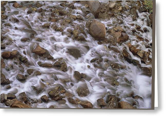 Fountain Creek Up Close  Greeting Card