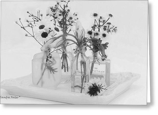 Four Bottles And Their Flowers Greeting Card by Sandra Foster