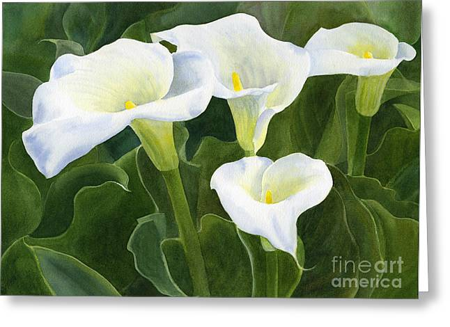 Four Calla Lily Blossoms With Leaves Greeting Card