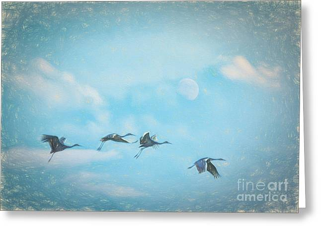 Four Cranes One Moon Greeting Card by Janice Rae Pariza