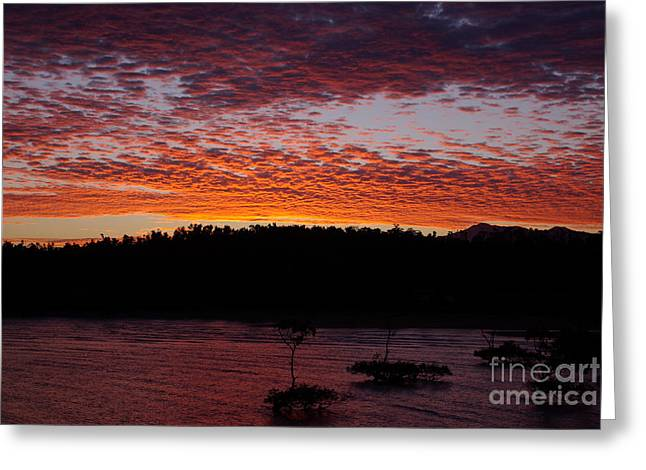 Greeting Card featuring the photograph Four Elements Sunset Sequence 2 Coconuts Qld by Kerryn Madsen - Pietsch