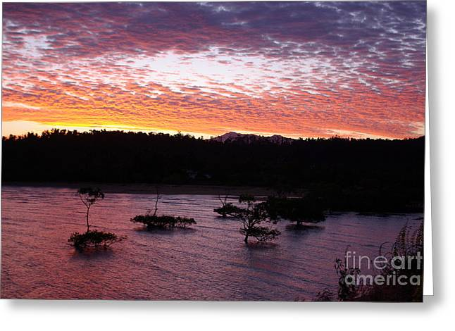 Greeting Card featuring the photograph Four Elements Sunset Sequence 3 Coconuts Qld by Kerryn Madsen - Pietsch