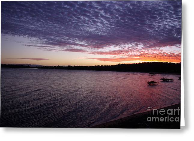 Greeting Card featuring the photograph Four Elements Sunset Sequence 4 Coconuts Qld  by Kerryn Madsen- Pietsch