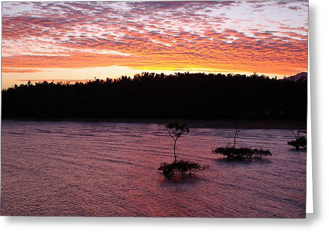 Greeting Card featuring the photograph Four Elements Sunset Sequence 5 Coconuts Qld  by Kerryn Madsen - Pietsch