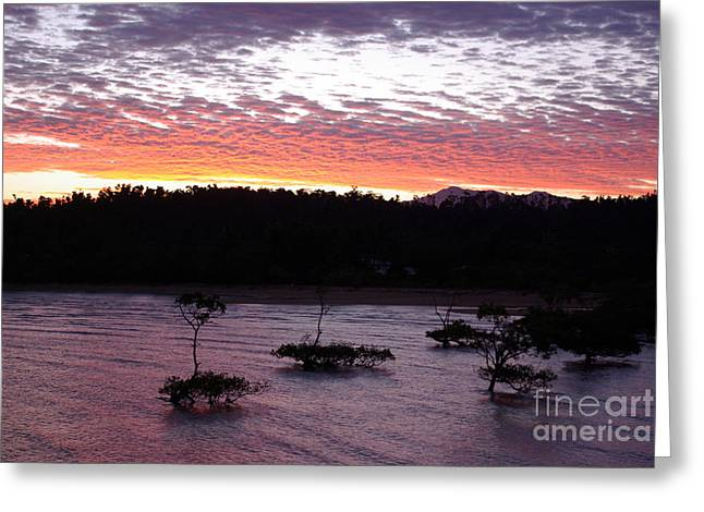 Greeting Card featuring the photograph Four Elements Sunset Sequence 8 Coconuts Qld  by Kerryn Madsen - Pietsch