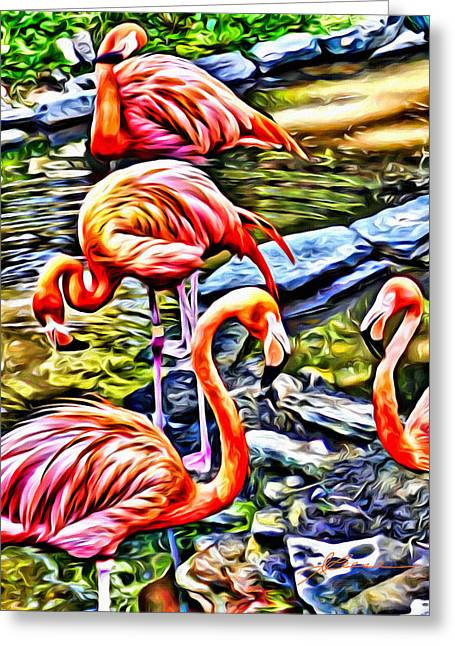 Four Pink Flamingos Greeting Card
