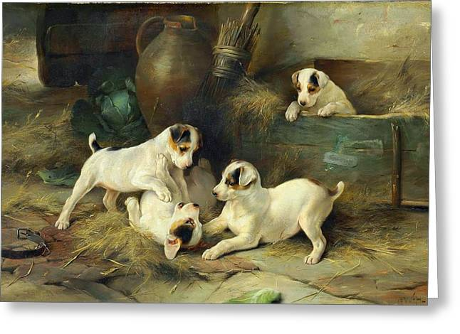 Four Puppies At Play Greeting Card