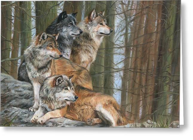 Four Wolves Greeting Card by David Stribbling