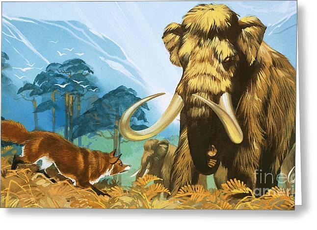 Fox Attacking Mammoth Greeting Card