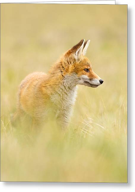Fox In Thoughts Greeting Card by Roeselien Raimond