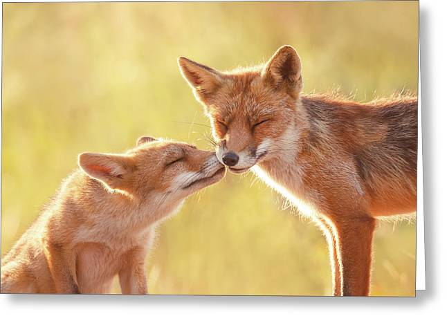 Fox Love Series - World Friendship Day Greeting Card