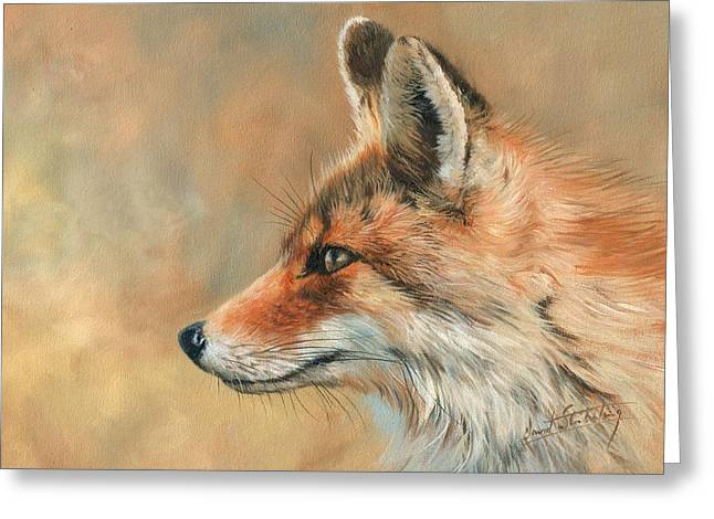 Fox Portrait Greeting Card by David Stribbling