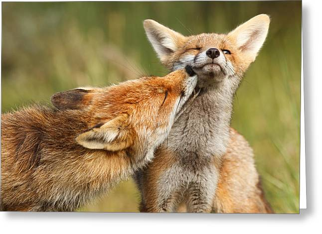 Foxy Love Series - But Mo-om Greeting Card