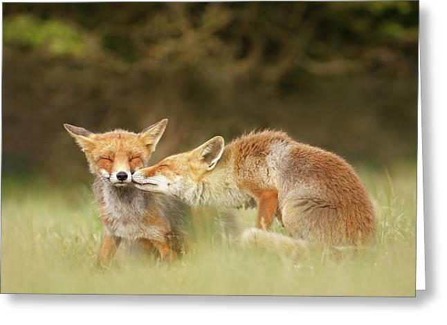 Foxy Love Series - Kiss Greeting Card