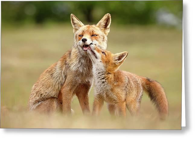 Foxy Love Series - Love You, Mom Greeting Card