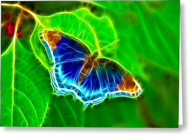 Fractal Butterfly Greeting Card by Rich Leighton