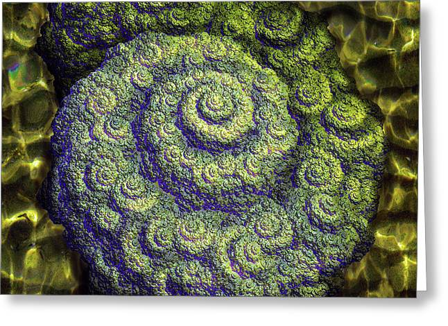 Fractal Nautilus Greeting Card by Michael Durst