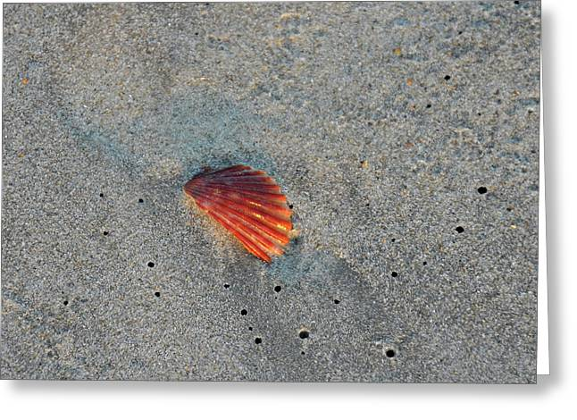 Fiery Fracture Greeting Card by JAMART Photography